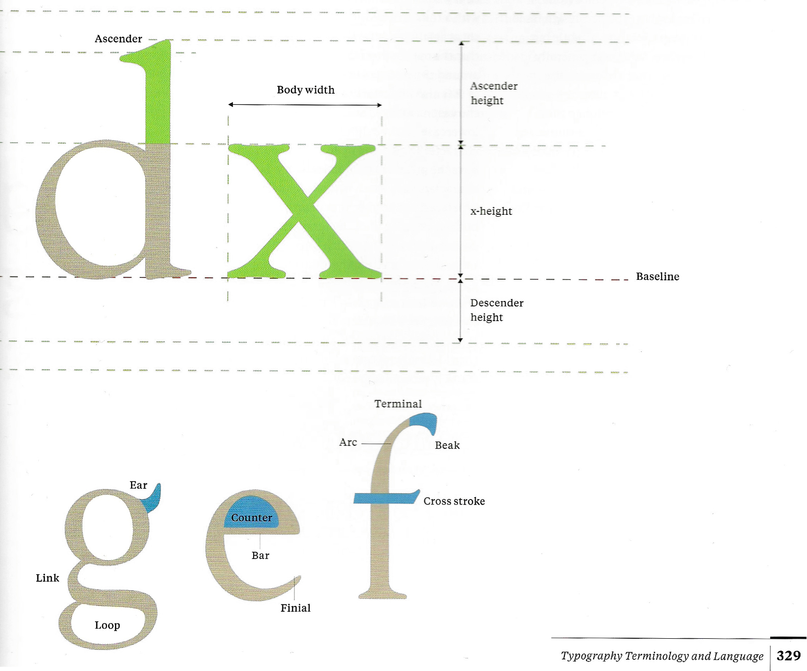 Anatomy Of Type Multiple Resources T Y P O G R P H Y