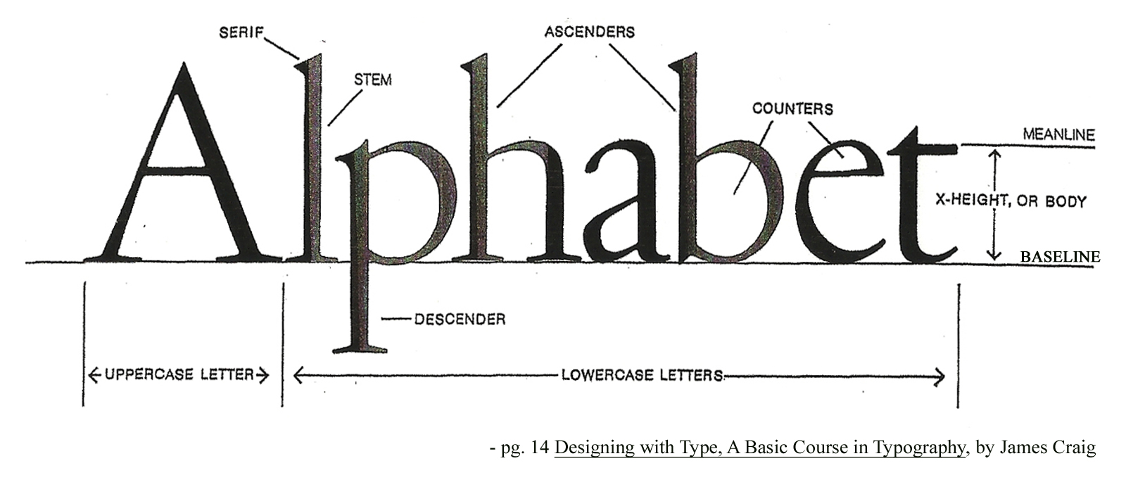 Anatomy of Type – Multiple Resources | T y P o G r @ P h Y